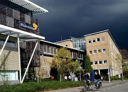 Normal_windesheim