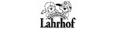 Half_basisschoollahrhof234x60